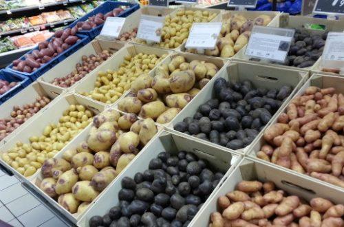 Article : Choc des civilisations culinaires – Partie 2 : bien manger en Afrique centrale aussi